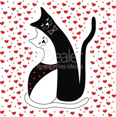 Cat Couple in Love
