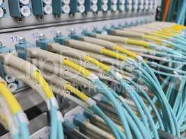 LWL Lichtwellenleiter an einem Switch
