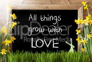 Sunny Narcissus, Easter Bunny, Quote All Things Grow With Love