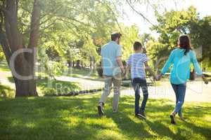 Rear view of family with hand in hand walking in park