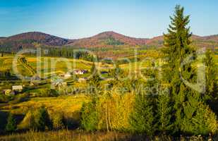 Village and autumn forest in mountains.