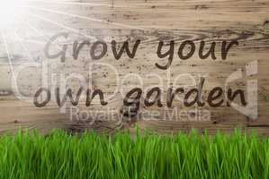 Sunny Wooden Background, Gras, Grow Your Own Garden