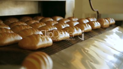 Bread bakery food factory production