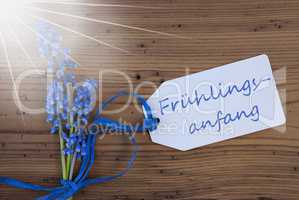 Sunny Srping Grape Hyacinth, Label, Fruehlingsanfang Means Beginning Of Spring