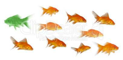 3D Side view of fish swimming