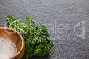 Bowl of sea salt and coriander leaves against black background