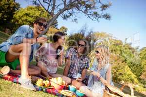 Friends having picnic in park