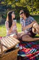 Romantic couple having picnic in the park
