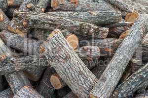 Sawing tree trunks in a heap.