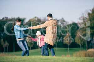 Happy family holding hands on meadow