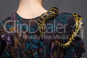 Snake crawling on woman's shoulder