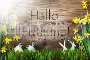 Sunny Easter Decoration, Gras, Hallo Fruehling Means Hello Spring