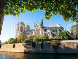 Majestic Notre Dame