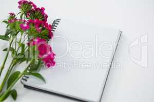 Pink flowers with spiral book
