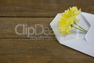 Yellow flowers in envelope on wooden plank