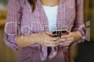 Female customer using mobile phone in grocery shop