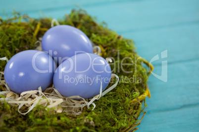 Violet Easter eggs in the nest