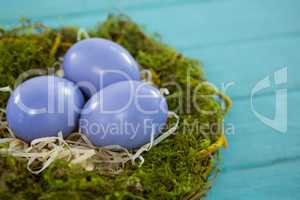 Violet Easter eggs in the nest