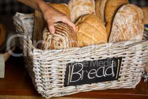 Female staff holding breads at counter in bakery shop