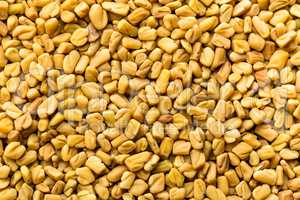 Fenugreek seeds background, spice, culinary ingredient