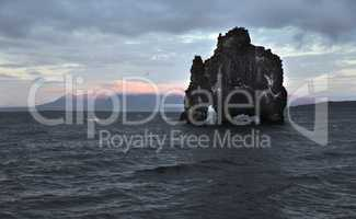 Drinking dragon, exposed rock in Iceland, seashore of the Atlant