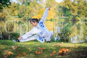 the wushu exercise
