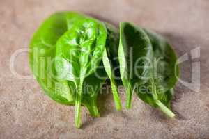 A bunch of Baby spinach