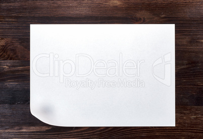 White sheet of paper with a curved bottom corner
