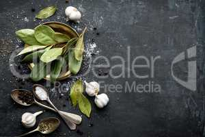 Dark culinary background with bay leaves, salt, pepper and garlic, view from above, copy space for recipe text