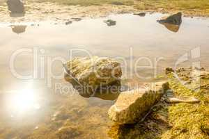 England, UK on a spring morning. Rocks and pools on sandy beach.