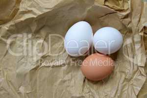 Bio Eier auf Papiertüte