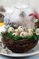 Quail easter eggs in a nest on wooden table