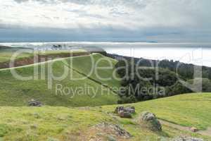 Mount Tamalpais Landscape in wintertime