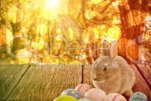 Composite image of bunny with patterned easter eggs