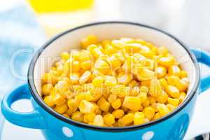 Corn canned, white background