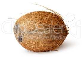 Coconut lying horizontally