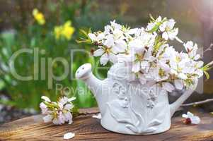 Branches of flowering almonds in a ceramic vase in the sun on a
