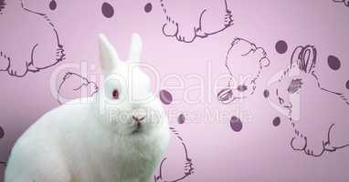 Easter rabbit in front of pattern