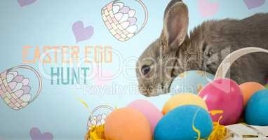 Easter Egg Hunt text with Easter rabbit with eggs in front of pattern