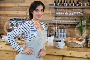 Portrait of waitress standing with hand on hip at counter