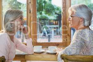 Senior friends interacting while having coffee