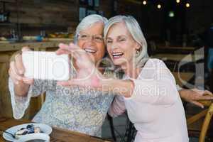 Two senior women taking selfie from mobile phone