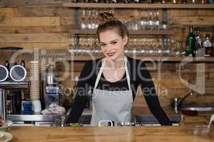 Portrait of smiling owner standing by counter