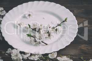 Empty dish with cherry blossom