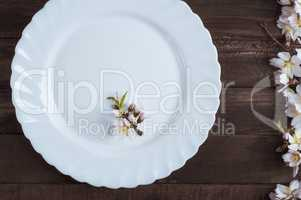 White empty plate with a branch of flowering almond