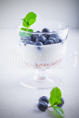 Yogurt with fresh blueberry and muesli