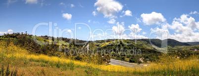 Aliso Viejo Wilderness Park view