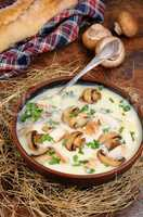 Soup puree from of champignons and chicken