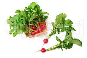 Radish in basket isolated on a white background