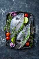 Fresh uncooked Dorado fish or sea bream with ingredients for cooking on dark background, top view